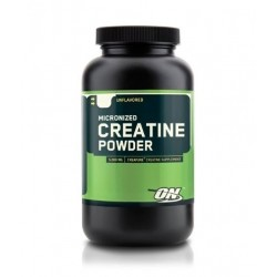 Optimum Nutrition Creatine Powder | 0.300 kg