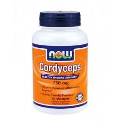 NOW Coral Calcium Powder | 170g