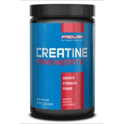Prolab Creatine Monohydrate Powder | 0.600kg