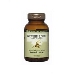 GNC Herbal Plus Ginger Root | 100 caps