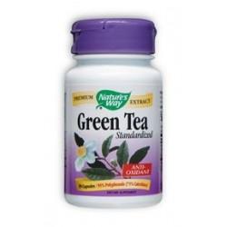 Nature's Way Green Tea Standardized   30 caps