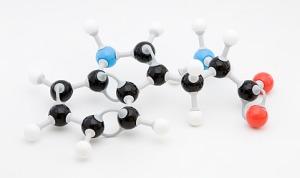 Аминокиселини 2 на супер цени